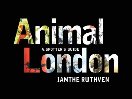 Animal London book cover