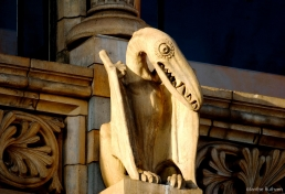 Pterodactyl by Dujardin of Farmer and Brindley, on the eastern side of the National History Museum, Cromwell Road, SW7, designed by Alfred Waterhouse, 1875-6.