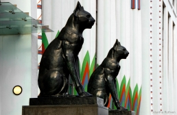 Two large bronze black cats guard the entrance to Greater London House, Mornington Crescent, NW1
