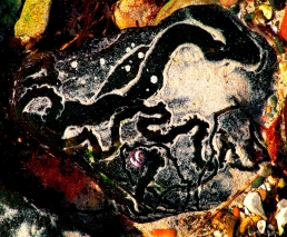 Snail Trail 4