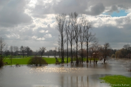 Flooding at Wallingford, Oxon
