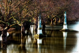 Flooding at the Old Deer Park, Richmond