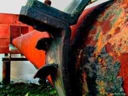 Waste pipe near estuary